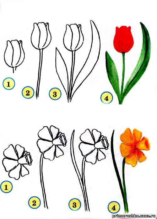 Картинки с цветками которые могут рисовать дети
